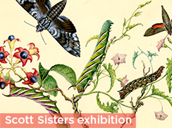 Scott Sisters exhibition