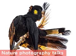 Nature photography talks