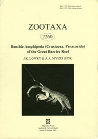 Zootaxa publication