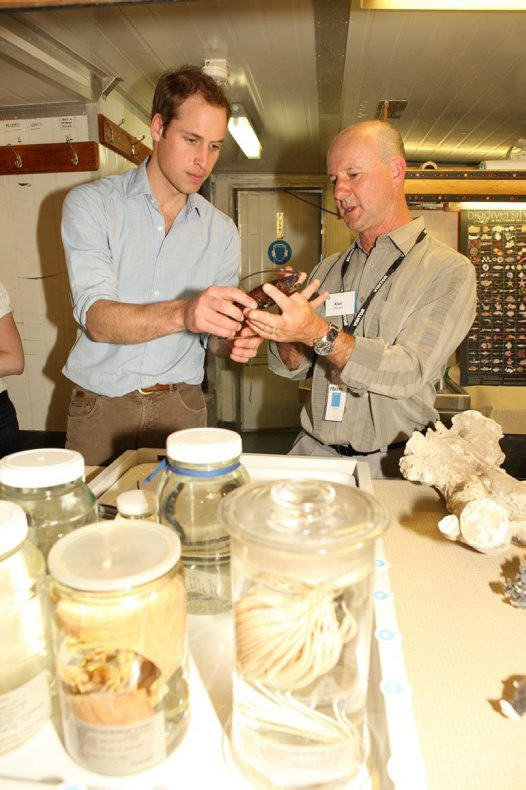 Prince William examines specimens