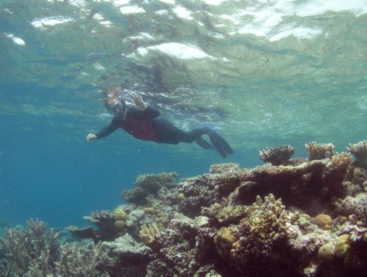 Ian Reid snorkeling at No Name Reef near Lizard Island