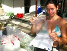 Dr Maud Ferrari, Lizard Island Research Station