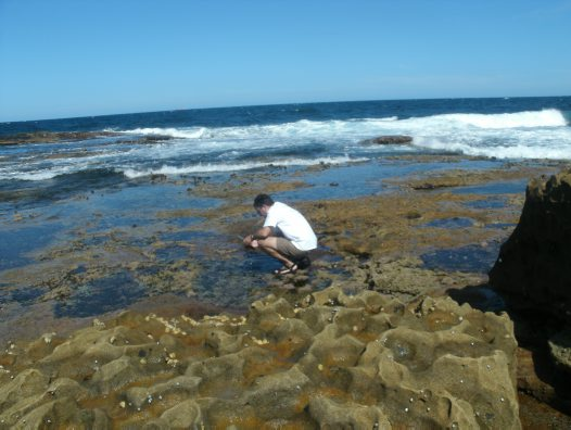 Collecting at Maroubra Rock Platform
