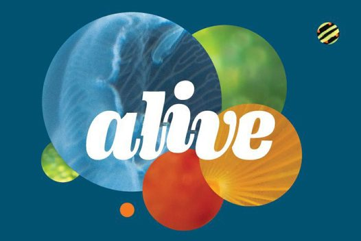Alive Exhibition Banner