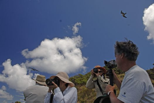 Australian Museum Members on Lord Howe Island 2009