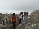 AM Members Trip to Antarctica: Penguins
