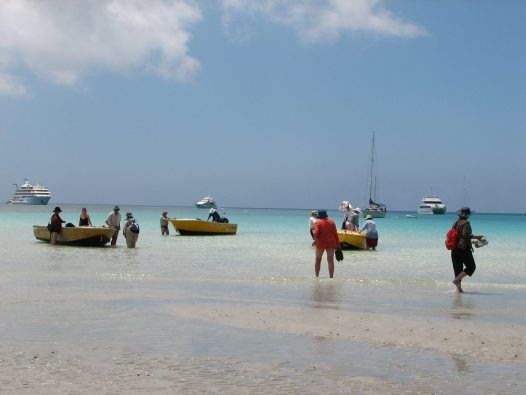 2007 trip to Lizard Island with AM Members