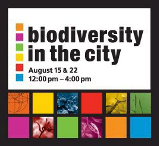 Biodiversity in the City