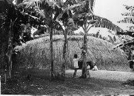 Hurricane proof house, Port Vila, Efate, Vanuatu