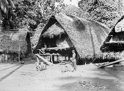 Houses, Frederick Willhelmshafen, Madang Province, PNG