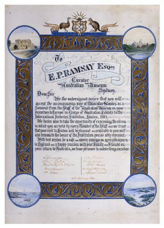 Illuminated certificate presented to Edward Ramsay by staff of the Australian Museum. 1883