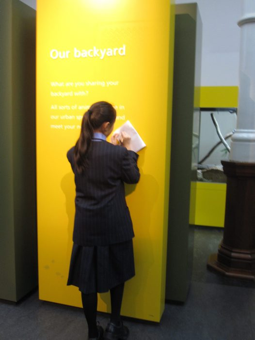 School student looking at text