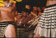 Waitangi Day Dancers - Young Maoris