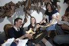 Students experiencing a hands-on fossils session