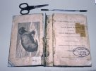 Restoration treatment of a rare book - The Taxidermist's Manual