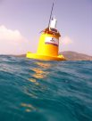 GBROOS buoy at Lizard Island