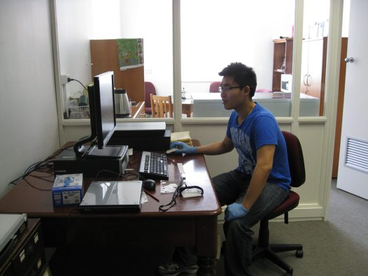 Archives' intern Willy Kwong at work