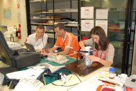 XRF workshop - panting analysis