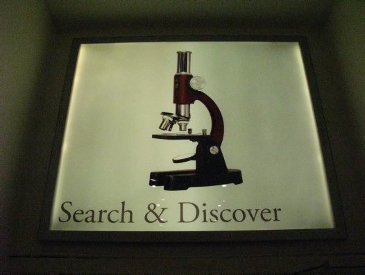 Search & Discover