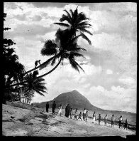 A beach on Mer (Murray Island), Torres Strait 1907