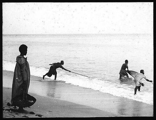 Fishing on Mer (Murray island) Torres Strait 1907