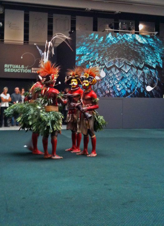 Huli dancers perform in Atrium