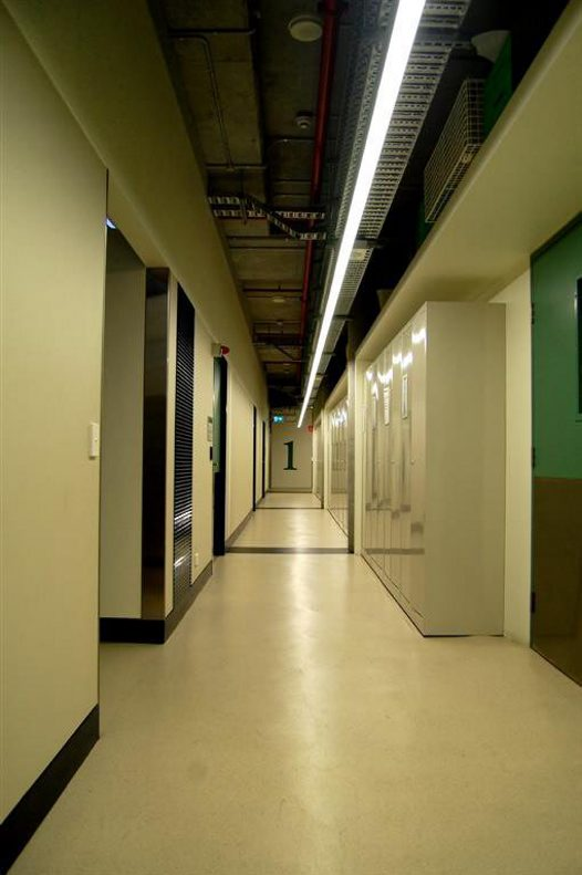 Australian Museum Collection and Research Building hallway