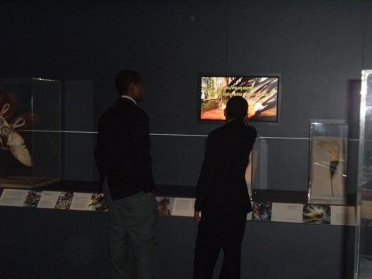 Students viewing Birds of Paradise exhibits