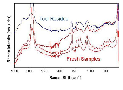 Raman spectrum of Hibiscus