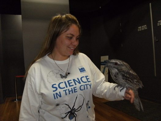 Laura McBride with Tawny Frogmouth