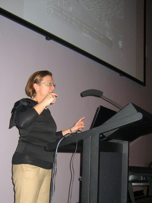 Professor Fiona Wood