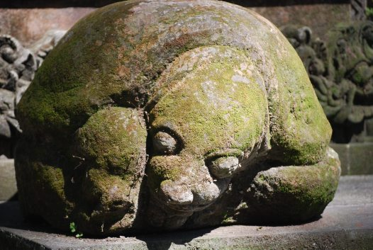 Tortoise from Temple of Death, Ubud
