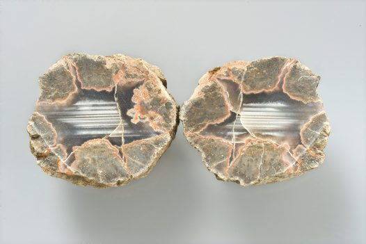 Thunder egg, polished halves. Boggabri, New South Wales