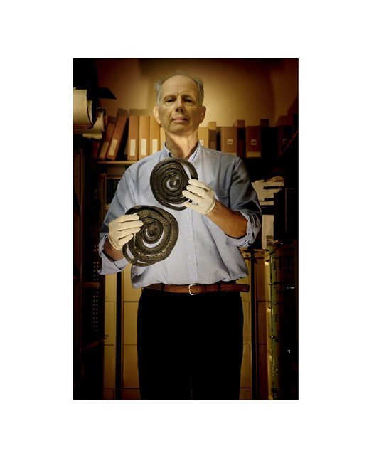 The Herpetologist, Allen Greer, Principal Research Scientist
