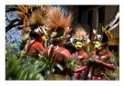 Traditional dances from the Huli men from the Southern Highlands, Papua New Guinea