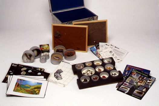 Museum in a Box - Aboriginal Food Technology