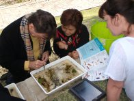 Museum2you Backyard Biodiversity workshop 1