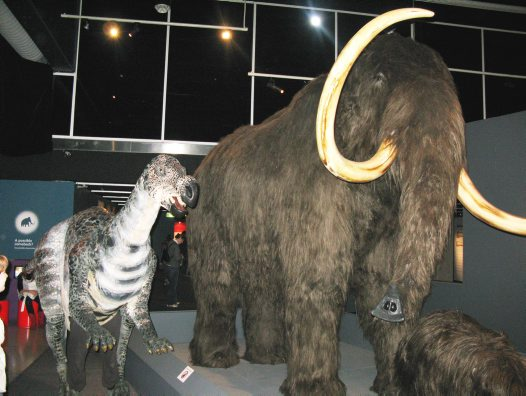 Winny and the adult mammoth