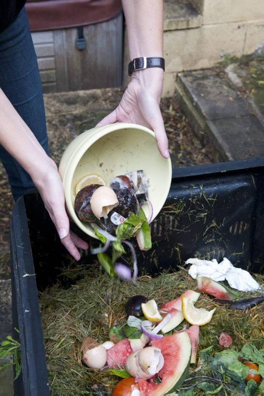Green Home Guide: Composting