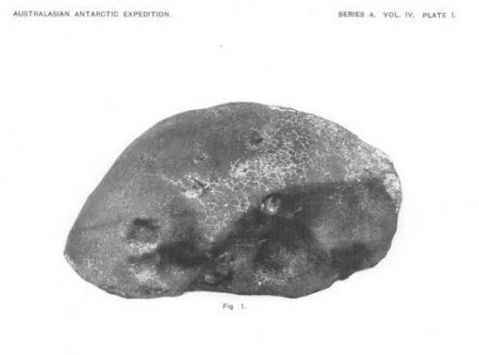 The Adelie Land Meteorite - 100 years of Astronomy in Antarctica