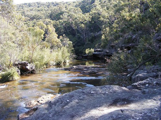 Walk: The Waterways of Heathcote