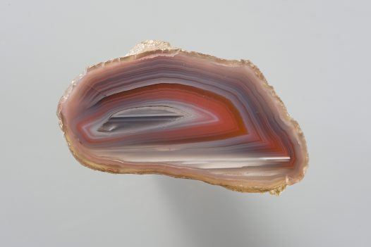 Polished agate half, Agate Creek, Queensland