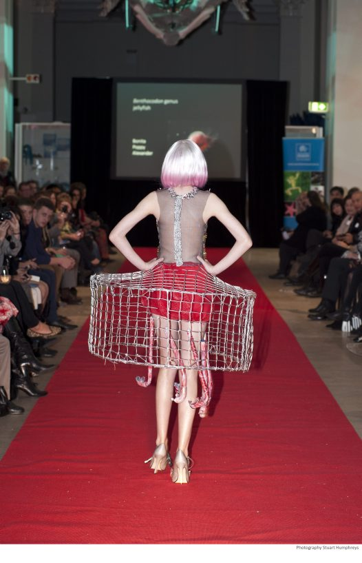 FLW 2012 Runner-up, Secondary School: Bonita Poppy (back)