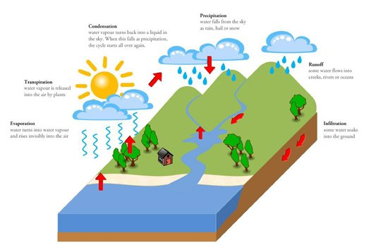 The water cycle - Australian Museum