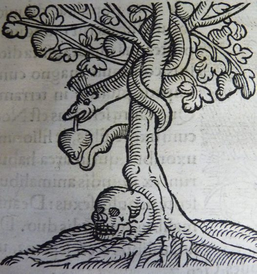The serpent and the apple from Lycosthenes' Portents (1557)