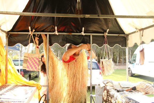 Cultural Collections celebrate Waitangi Day #1
