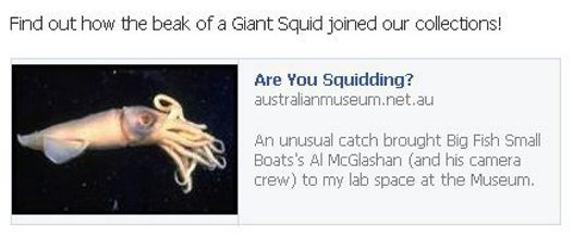 Squid post