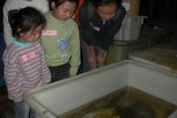 Young visitors in the tank area