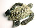 Ghost net art, Ellarose Savage Turtle - E095503 #5