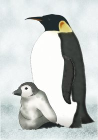 Emperor Penguin and Chick Illustration